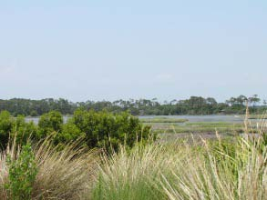 kiawah island marshfront homes for sale