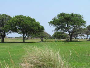 kiawah island golf courses