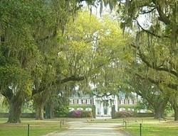 boone hall plantation mt pleasant sc