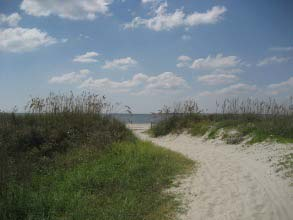 beach at sullivans island sc