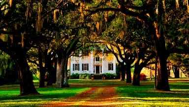 mcleod plantation charleston james island