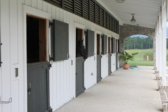Equestrian Properties in Charleston, SC: Private Equestrian