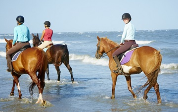 riding horses on seabrook